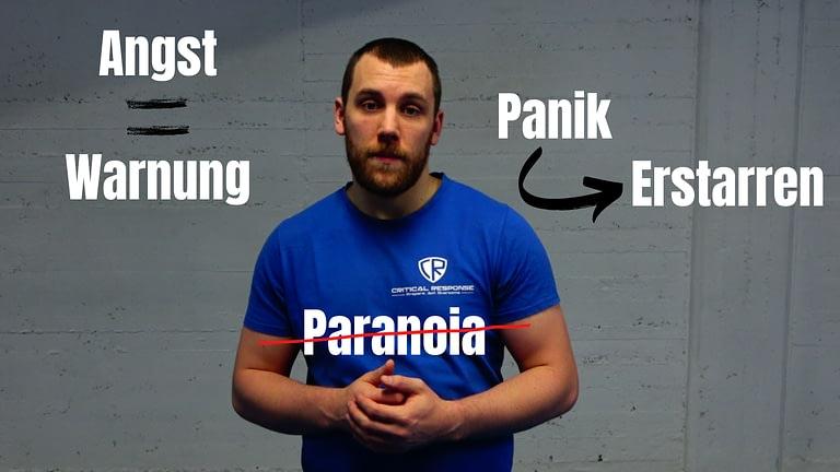 Angst, Panik, Paranoia